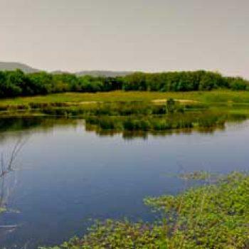 Plaiaundiko Parke Ekologikoa